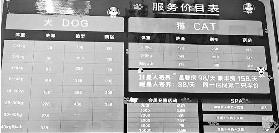 《2018年中国宠物行业白皮书》近日发布 中国城镇养宠人数