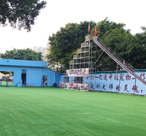 深圳翔鹏宠物警犬训练学校