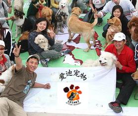 北京爱迪宠物教育培训中心
