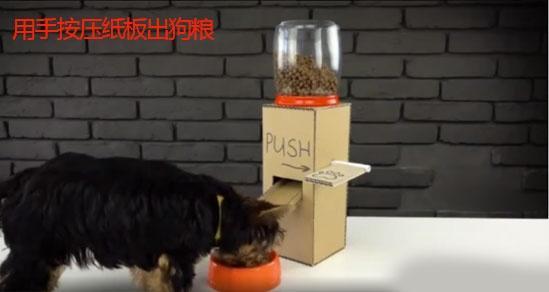 教你如何用废纸箱制作宠物喂食器,简单好做还省钱!